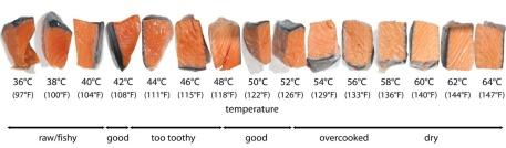 chart-fish