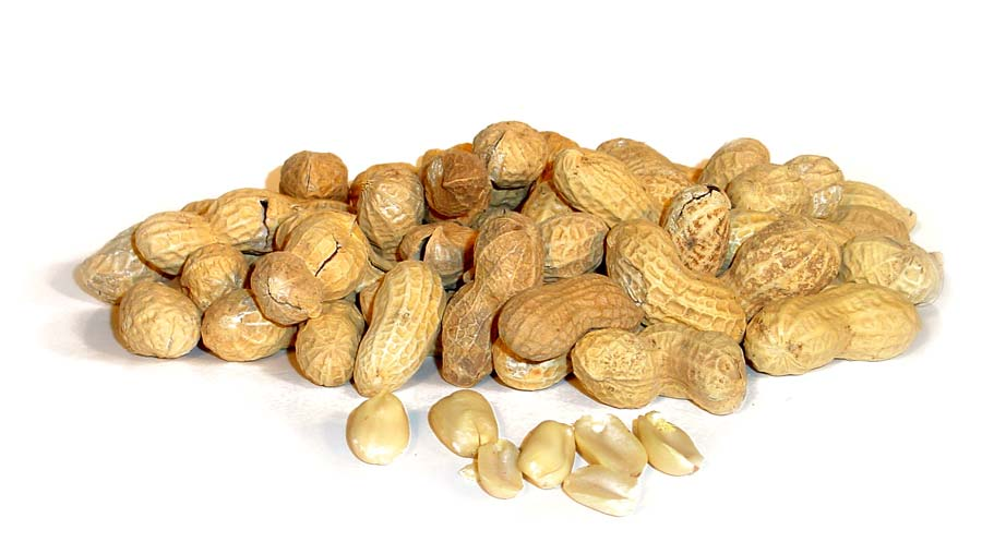 Peanut-Allergy
